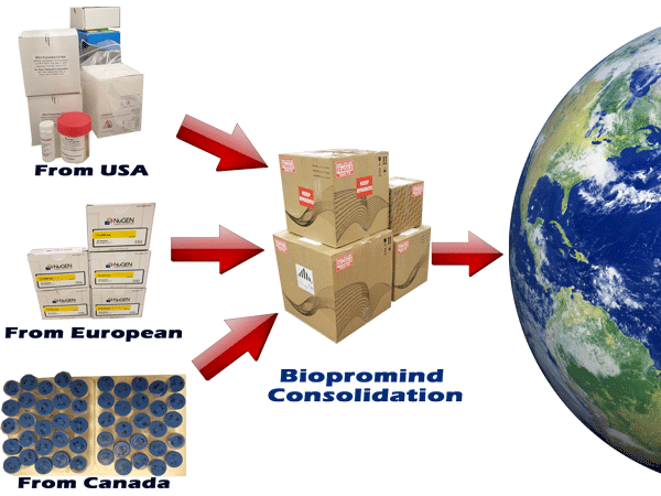 Biopromoind Biological Consolidation Service