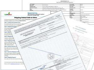 Biopromind Document Service