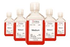 Biopromind Cell Culture Media